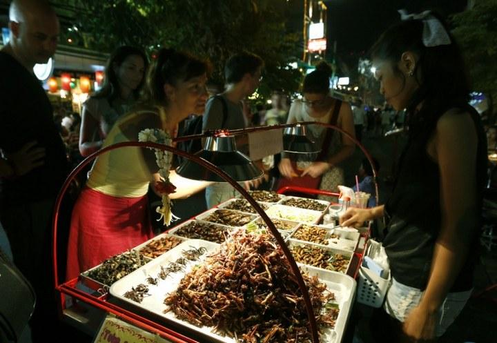 Как в Таиланде разводят съедобных насекомых (12)