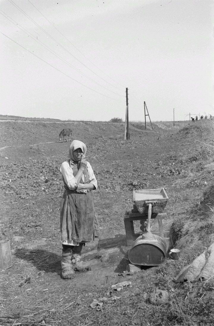 Белгородская область в объективе немецкого фотографа Франца Грассера, 1943 год (2)
