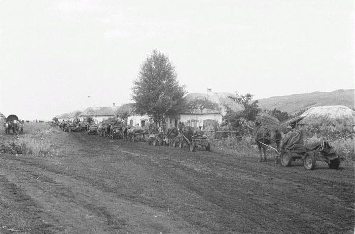 Белгородская область в объективе немецкого фотографа Франца Грассера, 1943 год (5)