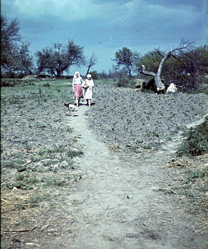 Белгородская область в объективе немецкого фотографа Франца Грассера, 1943 год (11)