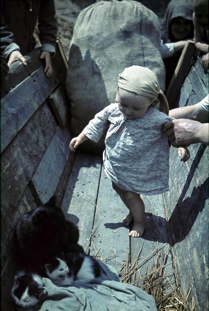 Белгородская область в объективе немецкого фотографа Франца Грассера, 1943 год (18)