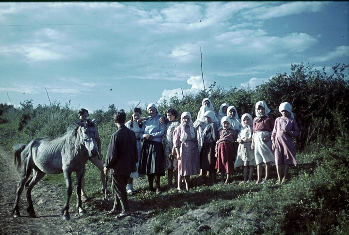 Белгородская область в объективе немецкого фотографа Франца Грассера, 1943 год (21)