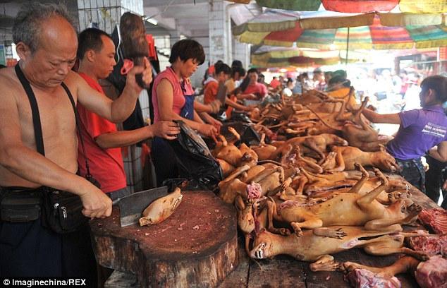 """""""Праздничное"""" поедание собак в Китае (2)"""