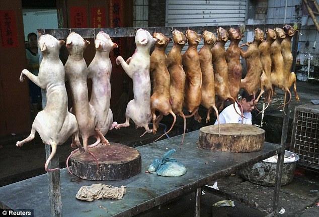 """""""Праздничное"""" поедание собак в Китае (4)"""