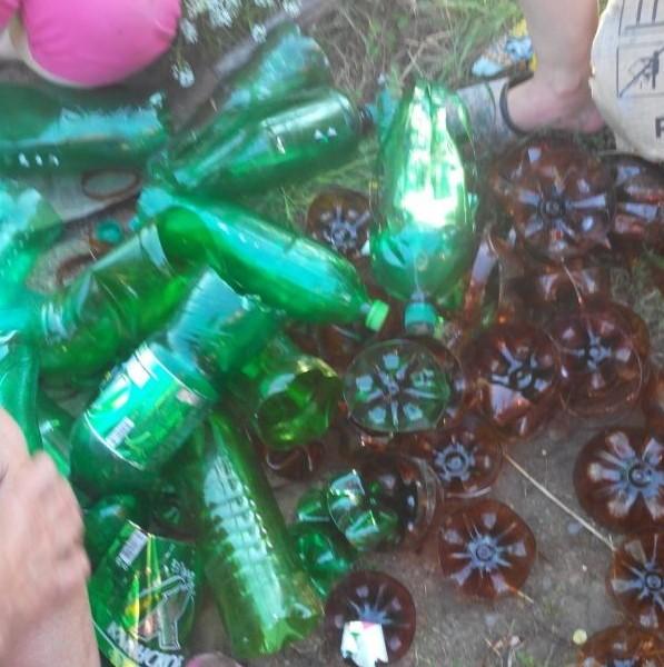 Как сделать пальму из пластиковых бутылок (4)