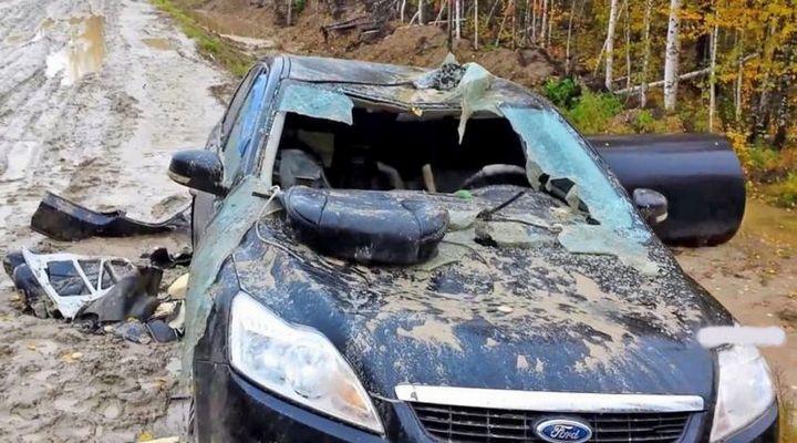 Разъяренный медведь отомстил своему обидчику изуродовав его автомобиль (1)