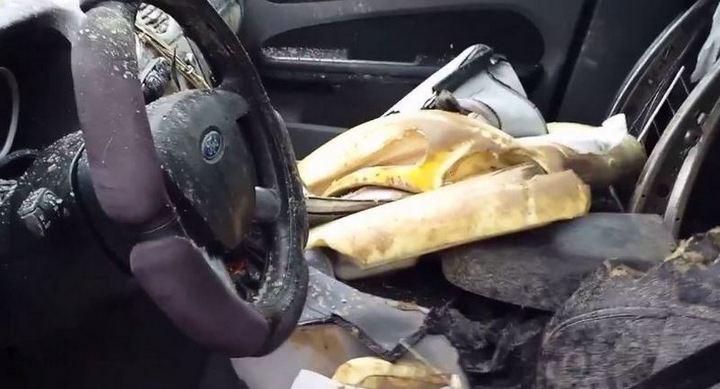 Разъяренный медведь отомстил своему обидчику изуродовав его автомобиль (2)