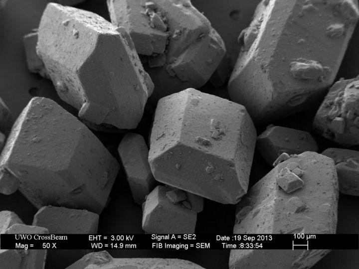 Под электронным сканирующем микроскопом (6)