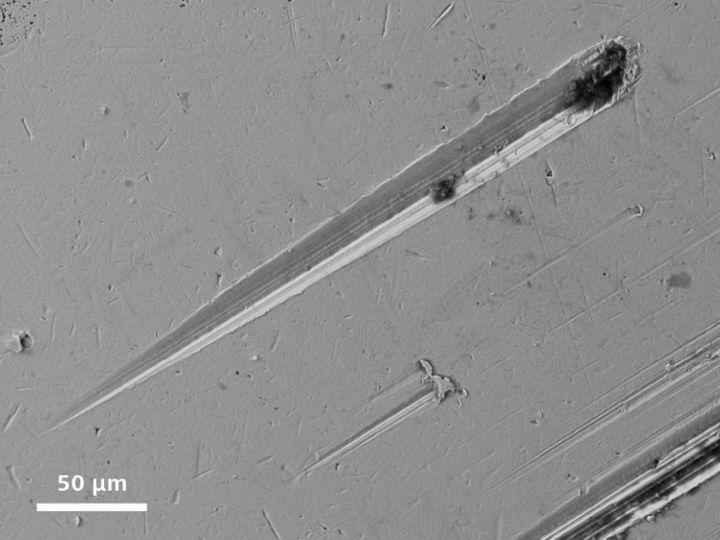 Под электронным сканирующем микроскопом (14)