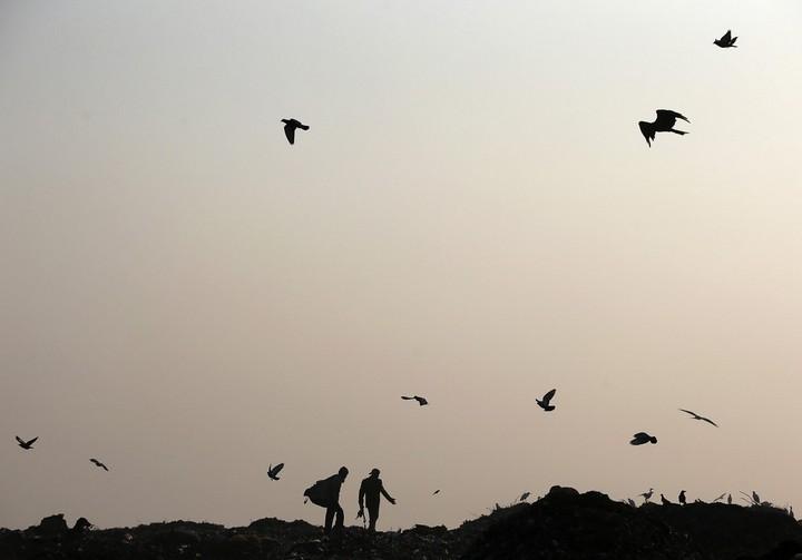 Работа на мусорных свалках в Индии (2)
