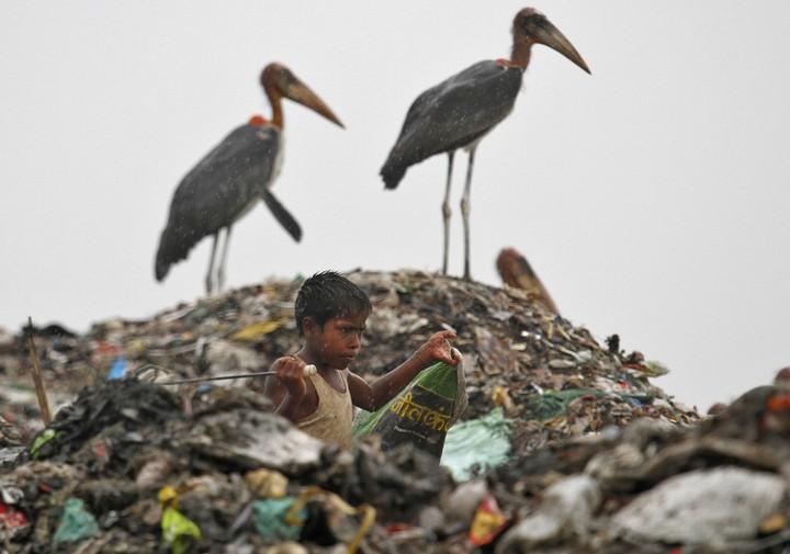 Работа на мусорных свалках в Индии (14)