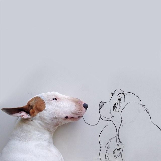 Бультерьер - забавная собака с особым нравом (9)