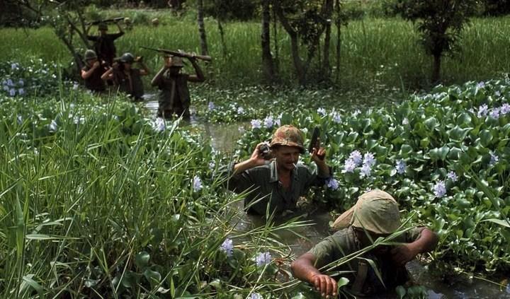 Вьетнамские ловушки для американцев (5)
