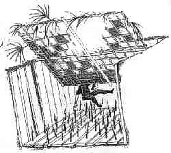 Вьетнамские ловушки для американцев (17)