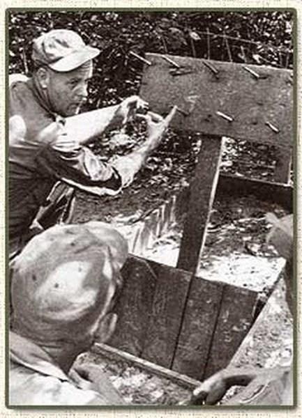 Вьетнамские ловушки для американцев (20)