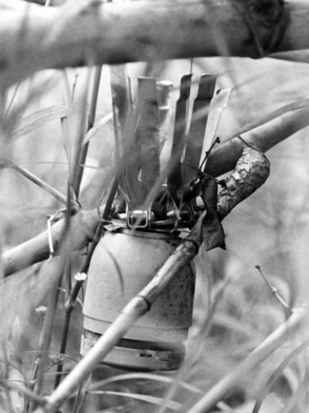 Вьетнамские ловушки для американцев (23)