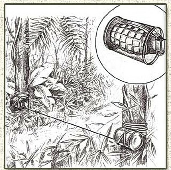 Вьетнамские ловушки для американцев (24)