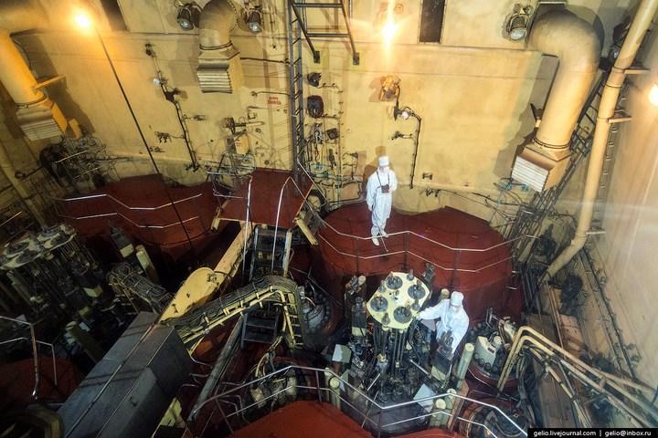 Атомные ледоколы России (38)