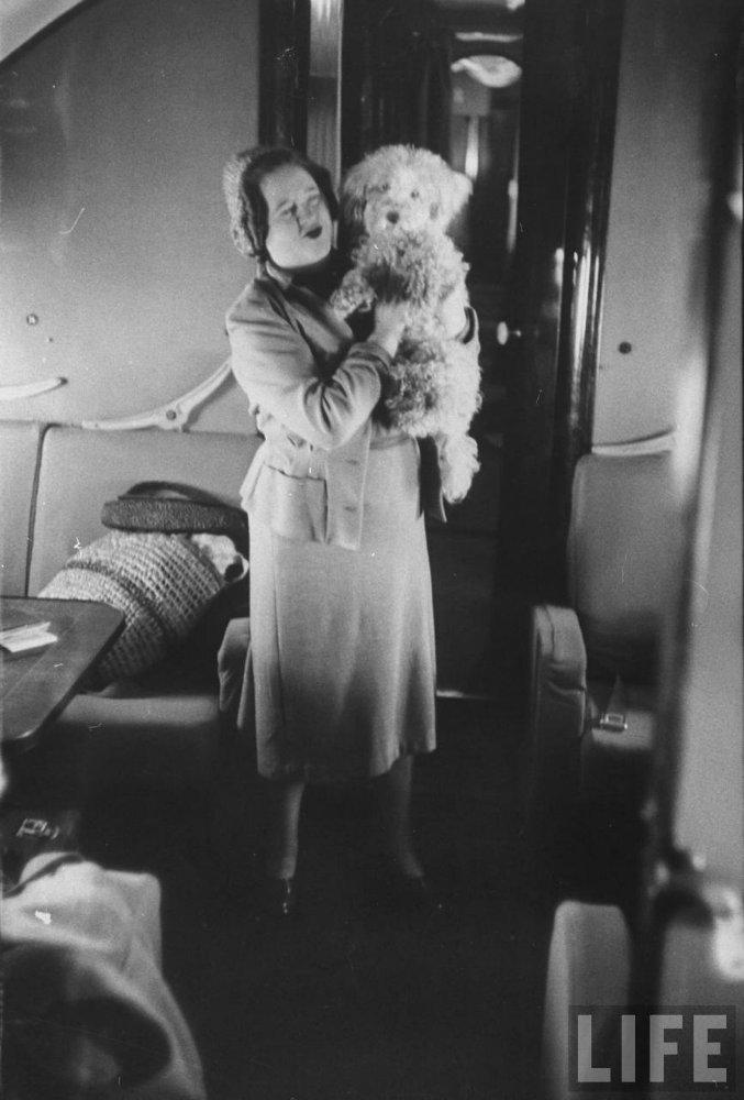 История первого класса в самолетах (35)