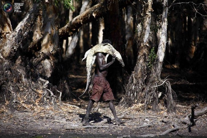 Как живут австралийские аборигены Йолнгу (1)