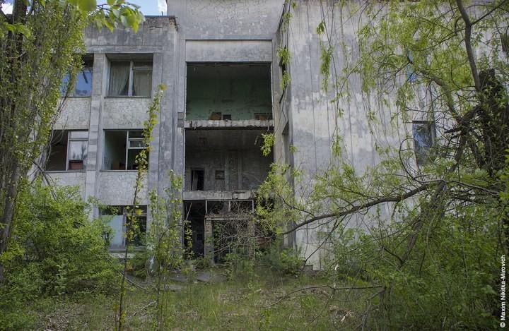 Мародёры Чернобыля (1)