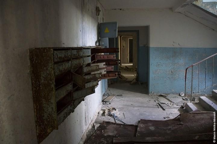 Мародёры Чернобыля (8)