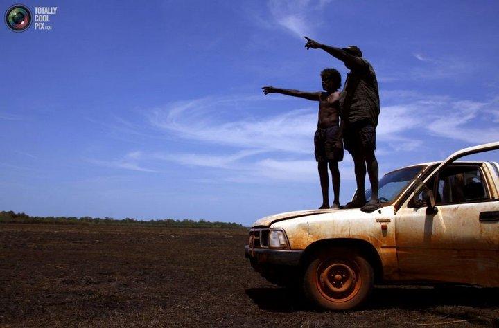 Как живут австралийские аборигены Йолнгу (10)