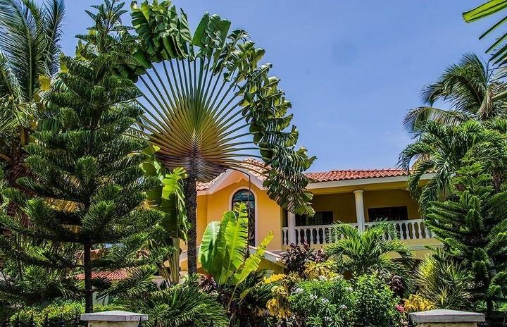 10 интересных фактов о Доминиканской Республике (10)