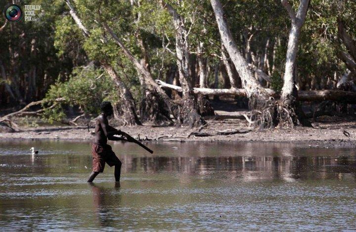 Как живут австралийские аборигены Йолнгу (14)