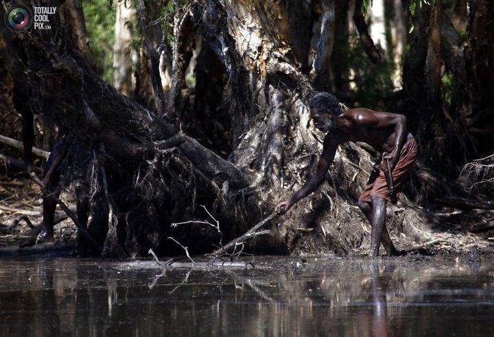 Как живут австралийские аборигены Йолнгу (15)