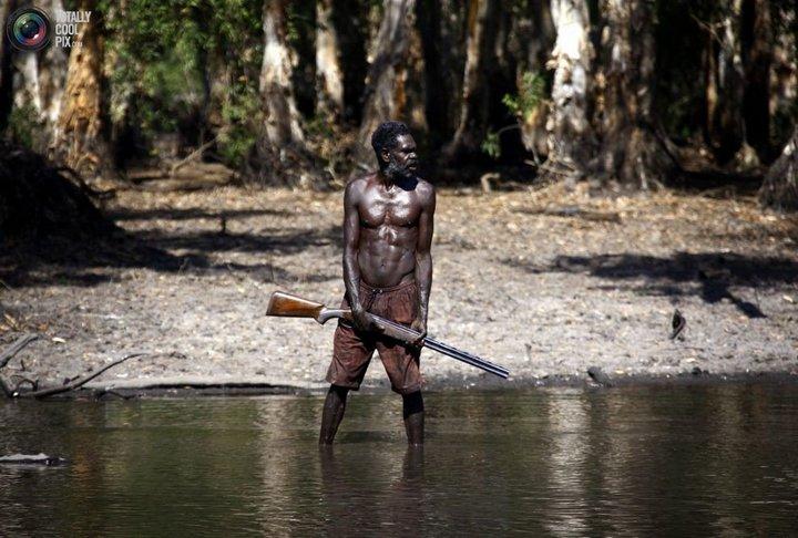 Как живут австралийские аборигены Йолнгу (16)