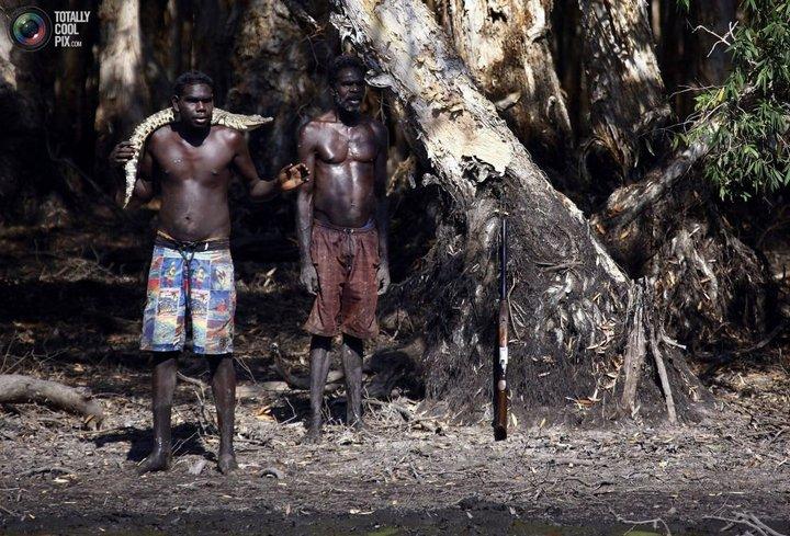 Как живут австралийские аборигены Йолнгу (19)