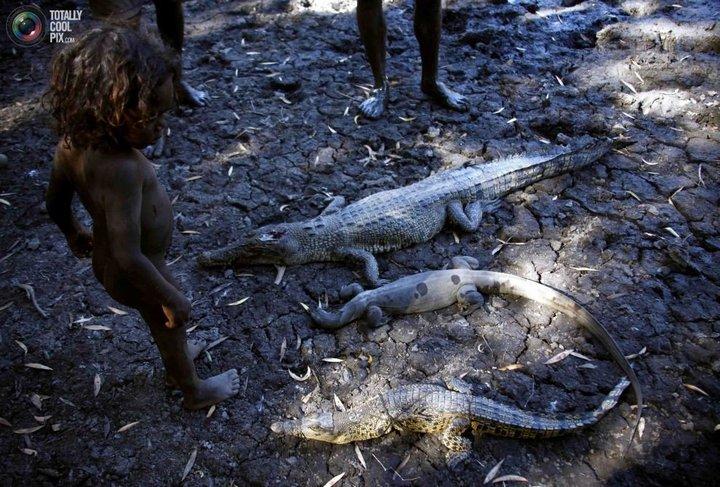 Как живут австралийские аборигены Йолнгу (20)