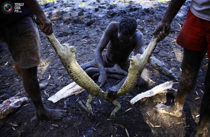 Как живут австралийские аборигены Йолнгу (22)