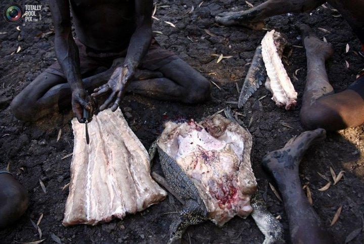 Как живут австралийские аборигены Йолнгу (23)