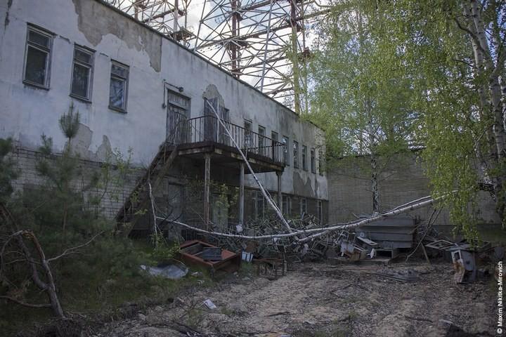 Мародёры Чернобыля (26)