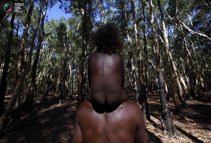 Как живут австралийские аборигены Йолнгу (28)