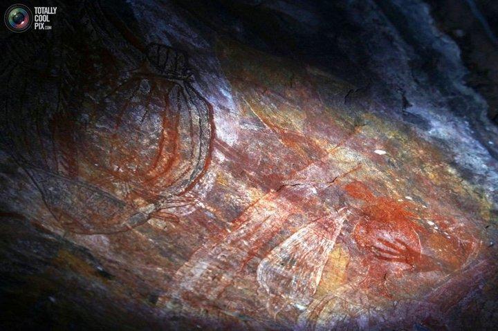 Как живут австралийские аборигены Йолнгу (31)