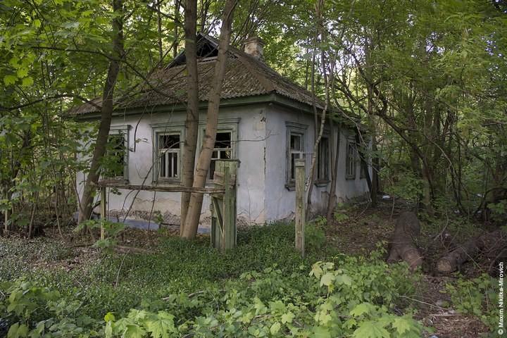 Мародёры Чернобыля (35)