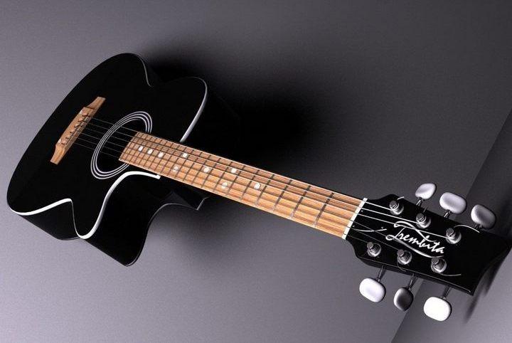 Влияние породы дерева на звук акустической гитары (4)