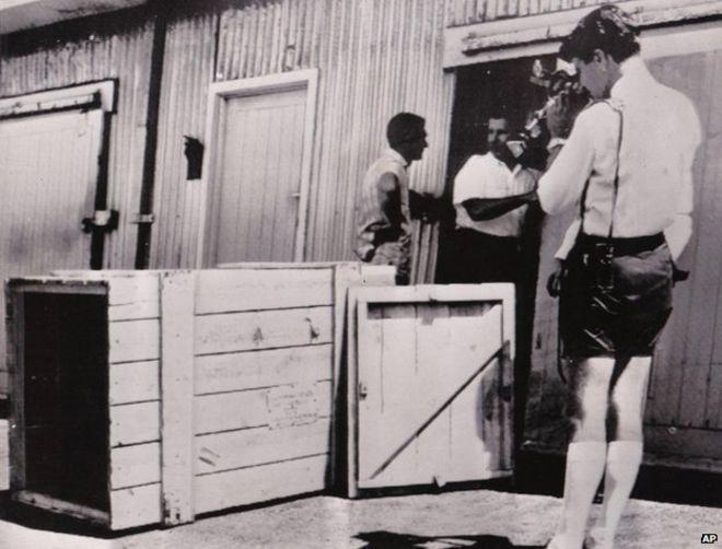 Три дня в ящике: как австралиец отправил себя домой посылкой (1)