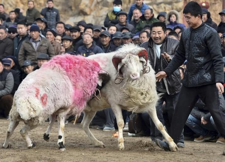 Повседневная жизнь в Китае (10)