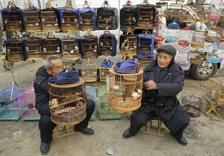 Повседневная жизнь в Китае (15)