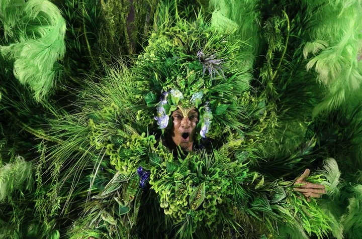 Бразильский карнавал — удивительное зрелище! (11)