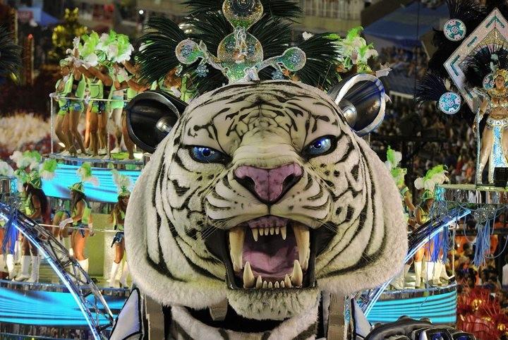 Бразильский карнавал — удивительное зрелище! (23)