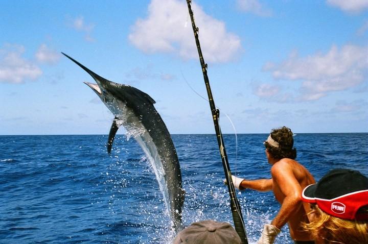 Интересные факты о рыбалке (4)