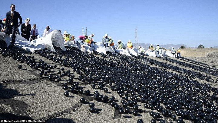 Гигантское покрывало из 96 миллионов черных шаров (1)