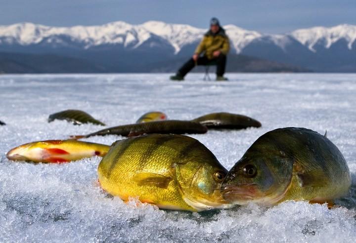 Что нужно знать, выбирая товары для зимней рыбалки (3)