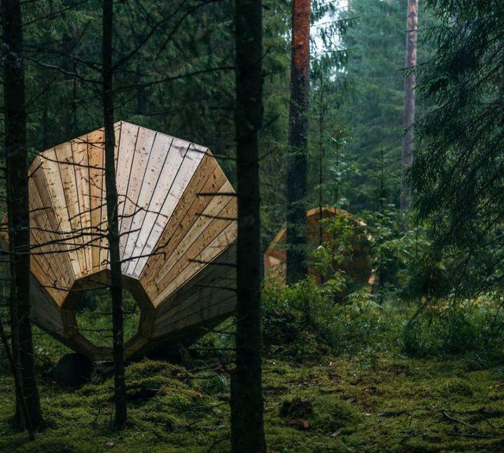 Деревянные приспособления для прослушивания звуков леса (3)