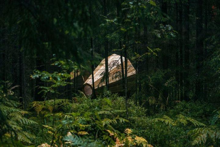 Деревянные приспособления для прослушивания звуков леса (6)